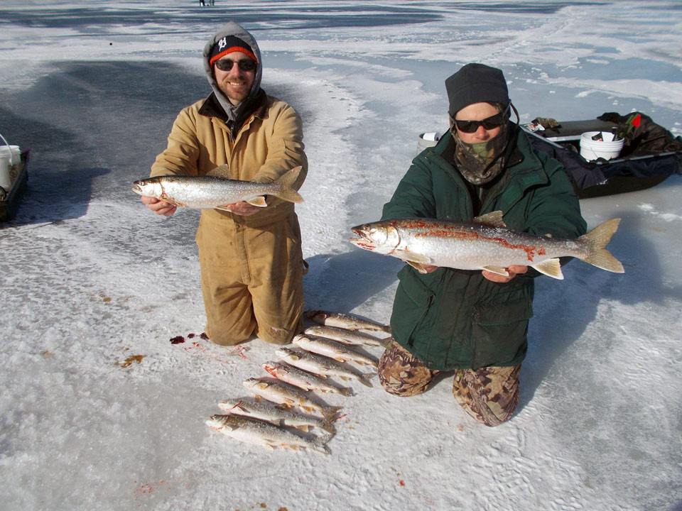 Lake trout action from higgins lake this winter michigan for Mi dnr fishing report