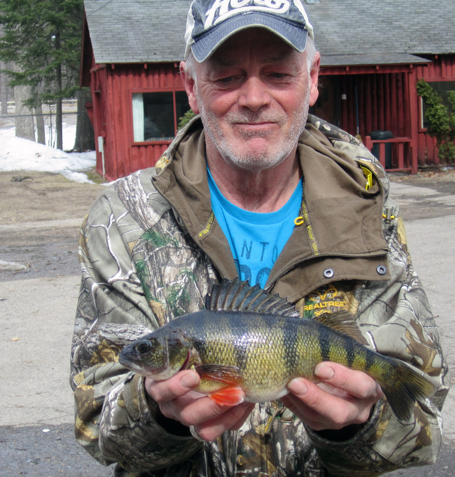 Charles Wright has been catching keeper perch on Lake Cadillac