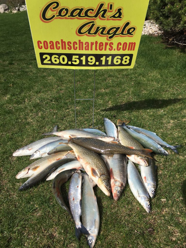coachs charters, fred fields whitefish, lake trout,